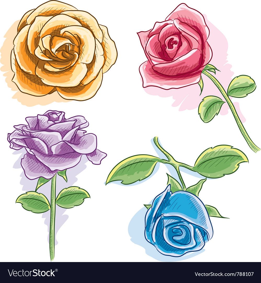 Watercolor rose vector | Price: 3 Credit (USD $3)