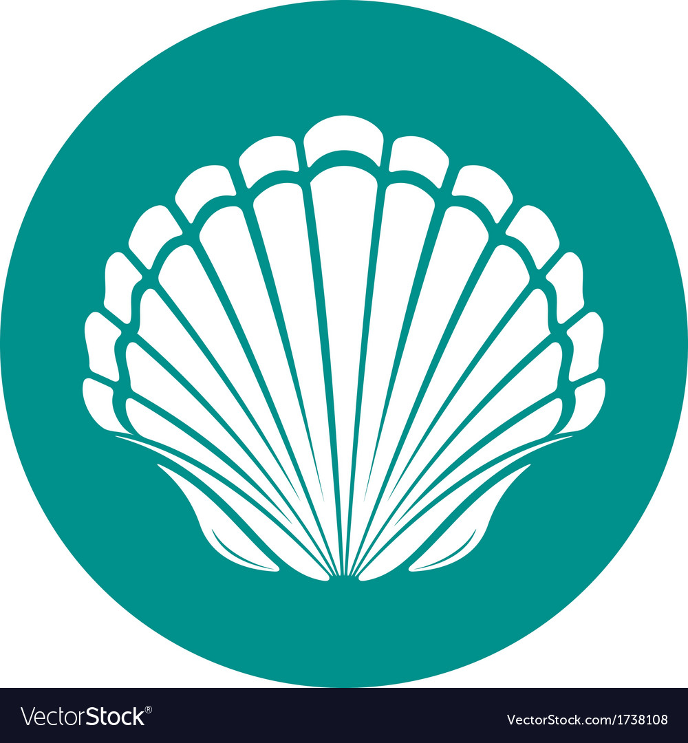 Scallop sea shell vector | Price: 1 Credit (USD $1)