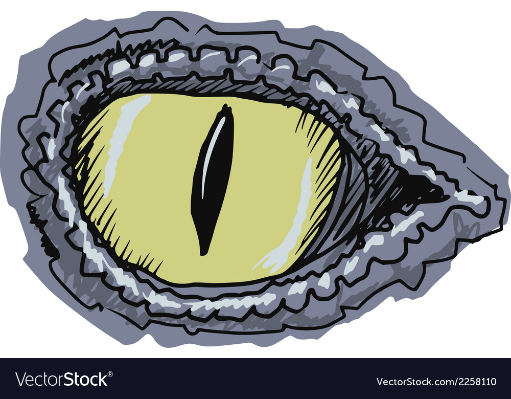 Eye of crocodile vector | Price: 1 Credit (USD $1)