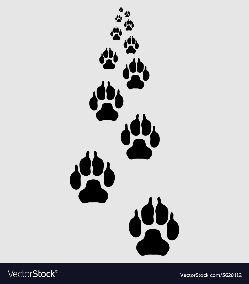 Trail of dogs 3 vector | Price: 1 Credit (USD $1)