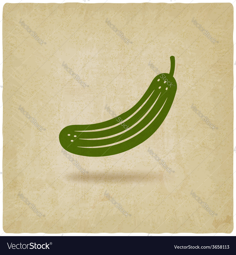 Cucumber symbol vector | Price: 1 Credit (USD $1)