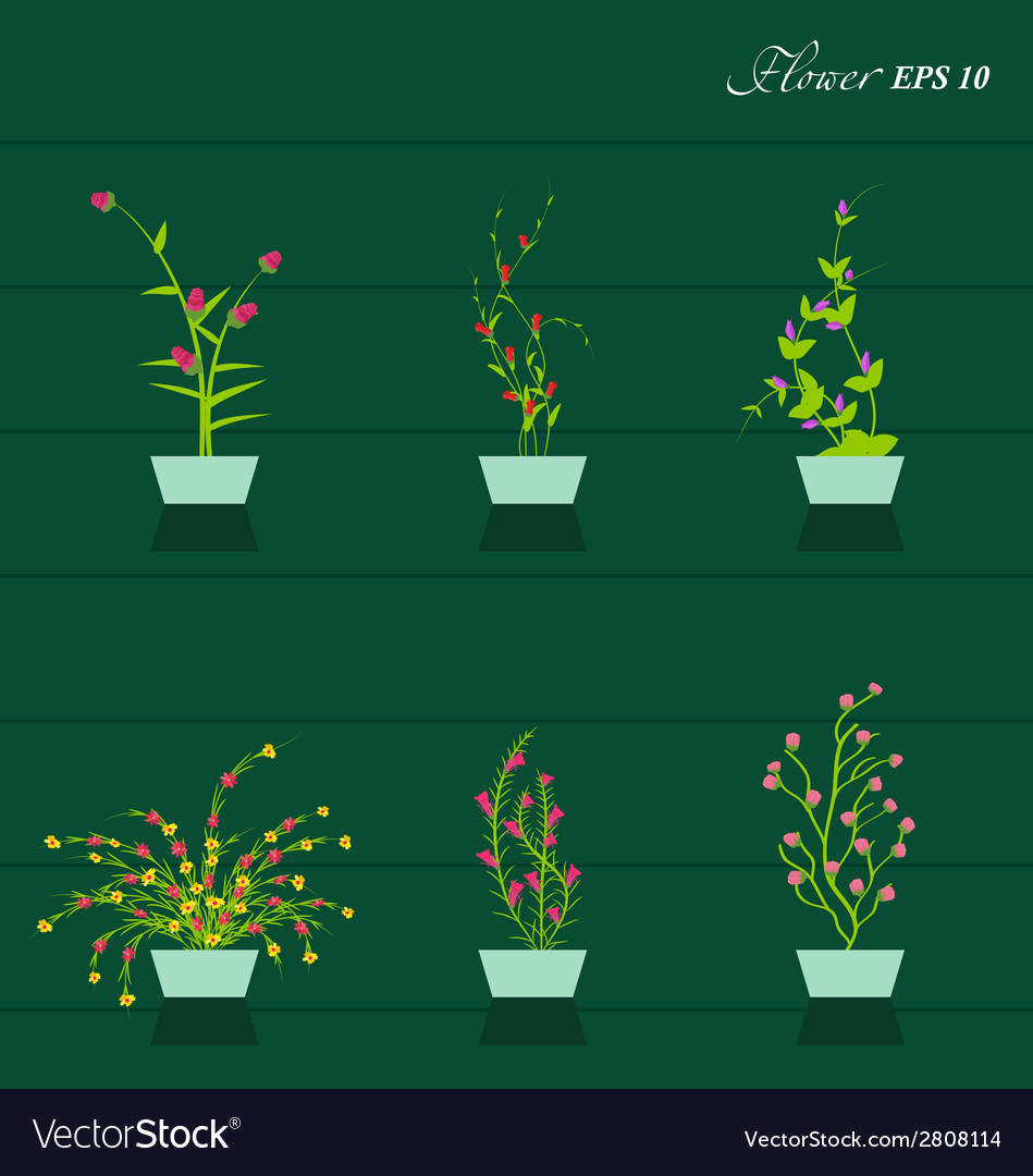 Flowers set vector | Price: 1 Credit (USD $1)