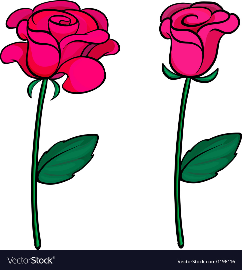 Two fresh roses vector | Price: 1 Credit (USD $1)
