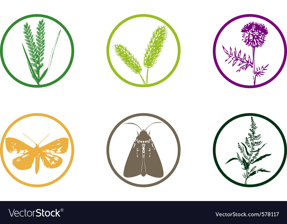Plant weed icon vector | Price: 1 Credit (USD $1)