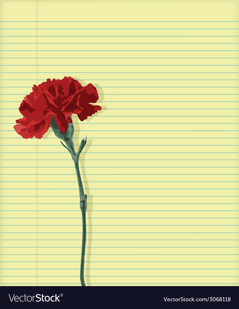 Carnation on paper vector | Price: 1 Credit (USD $1)