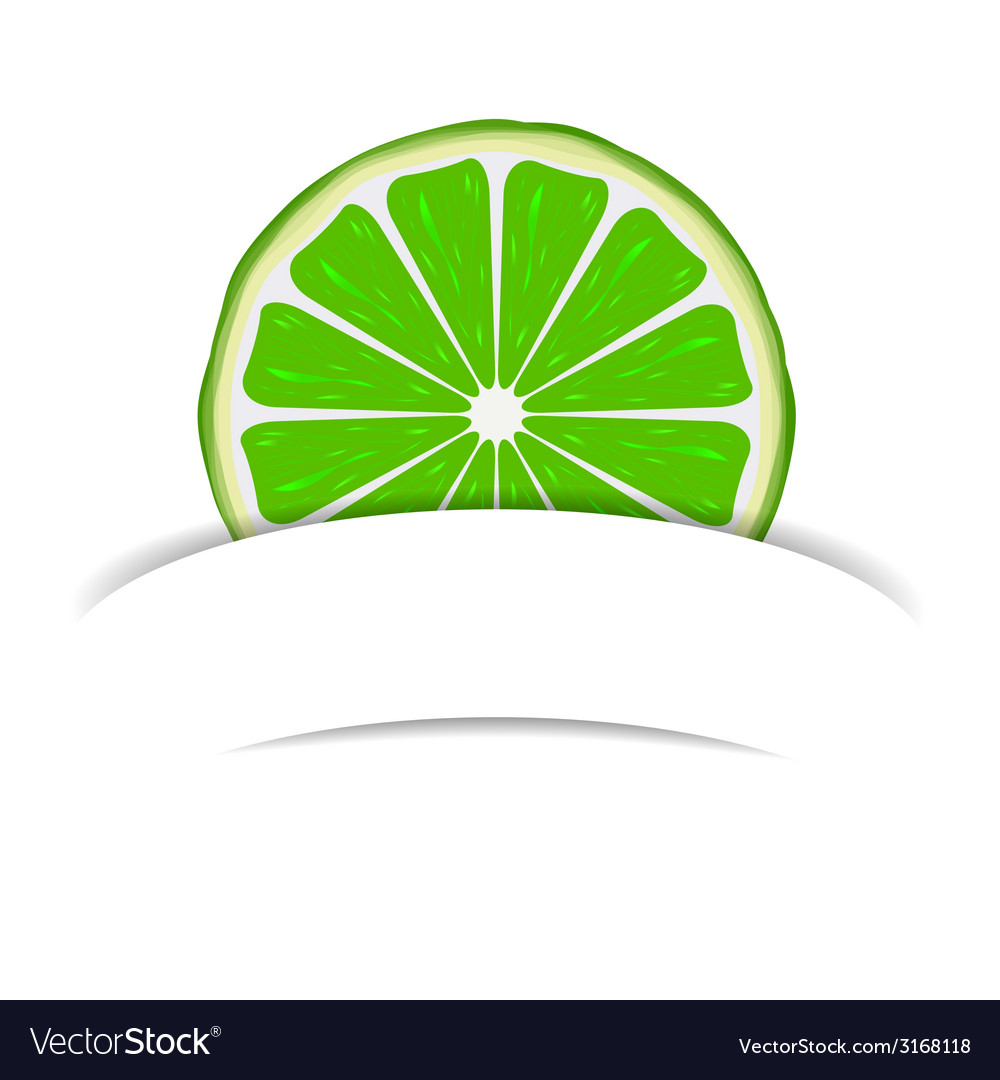 Lime with paper banner vector | Price: 1 Credit (USD $1)
