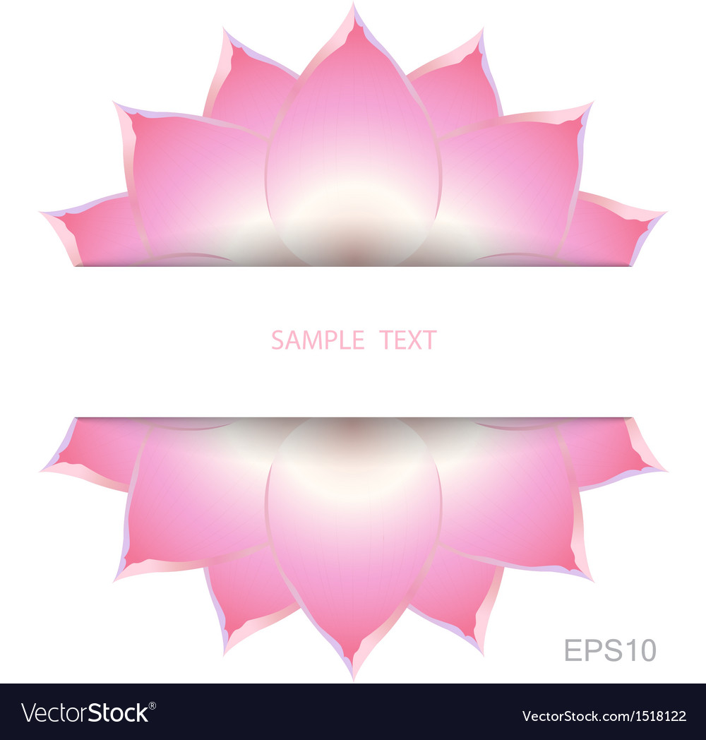 Lotus background decorate vector | Price: 1 Credit (USD $1)