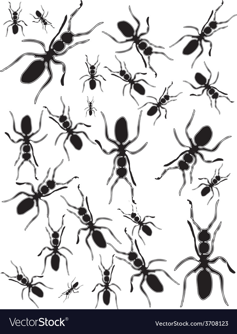 Set ants silhouette vector | Price: 1 Credit (USD $1)