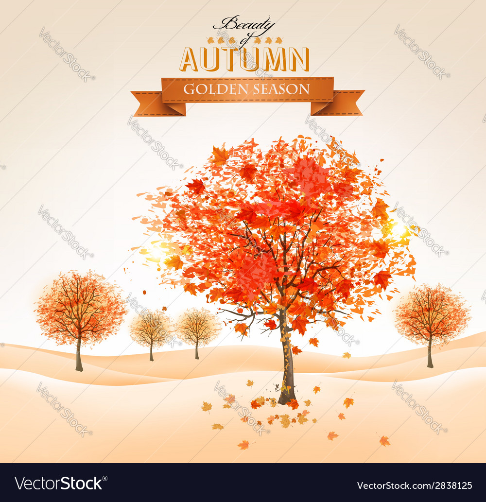 Autumn background with colorful leaves and trees vector | Price: 1 Credit (USD $1)