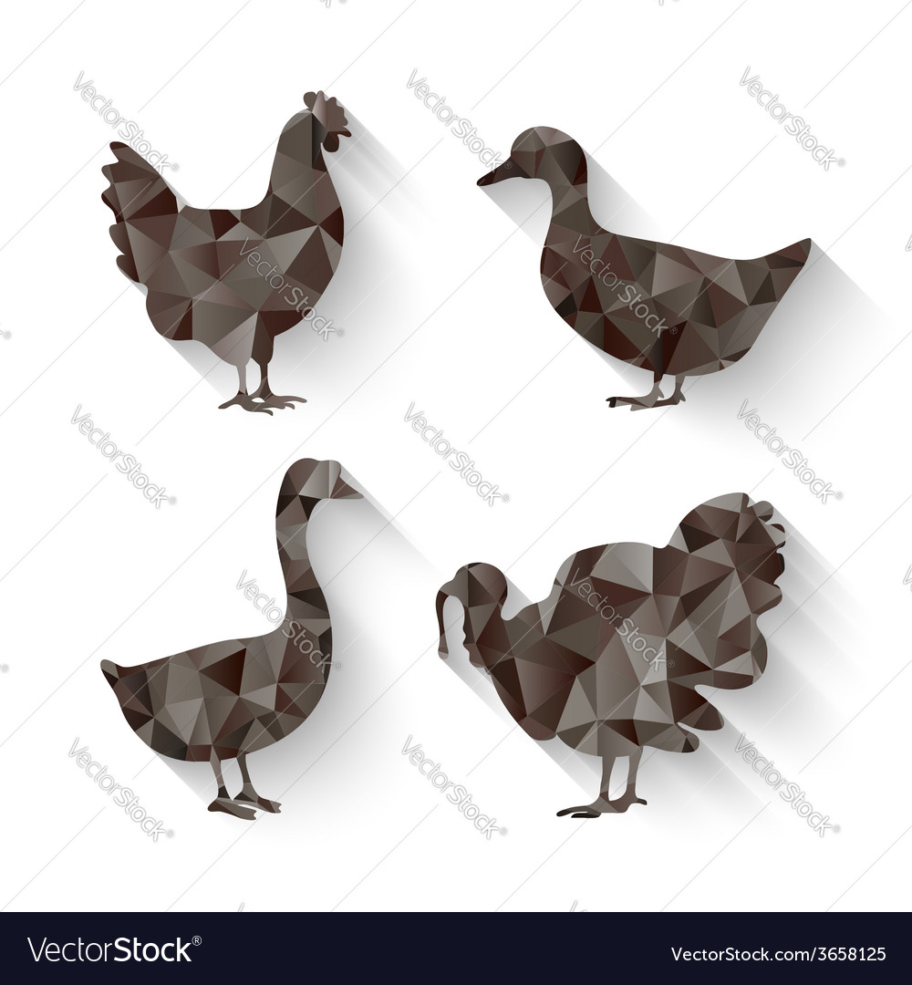 Domestic fowl symbol vector | Price: 1 Credit (USD $1)