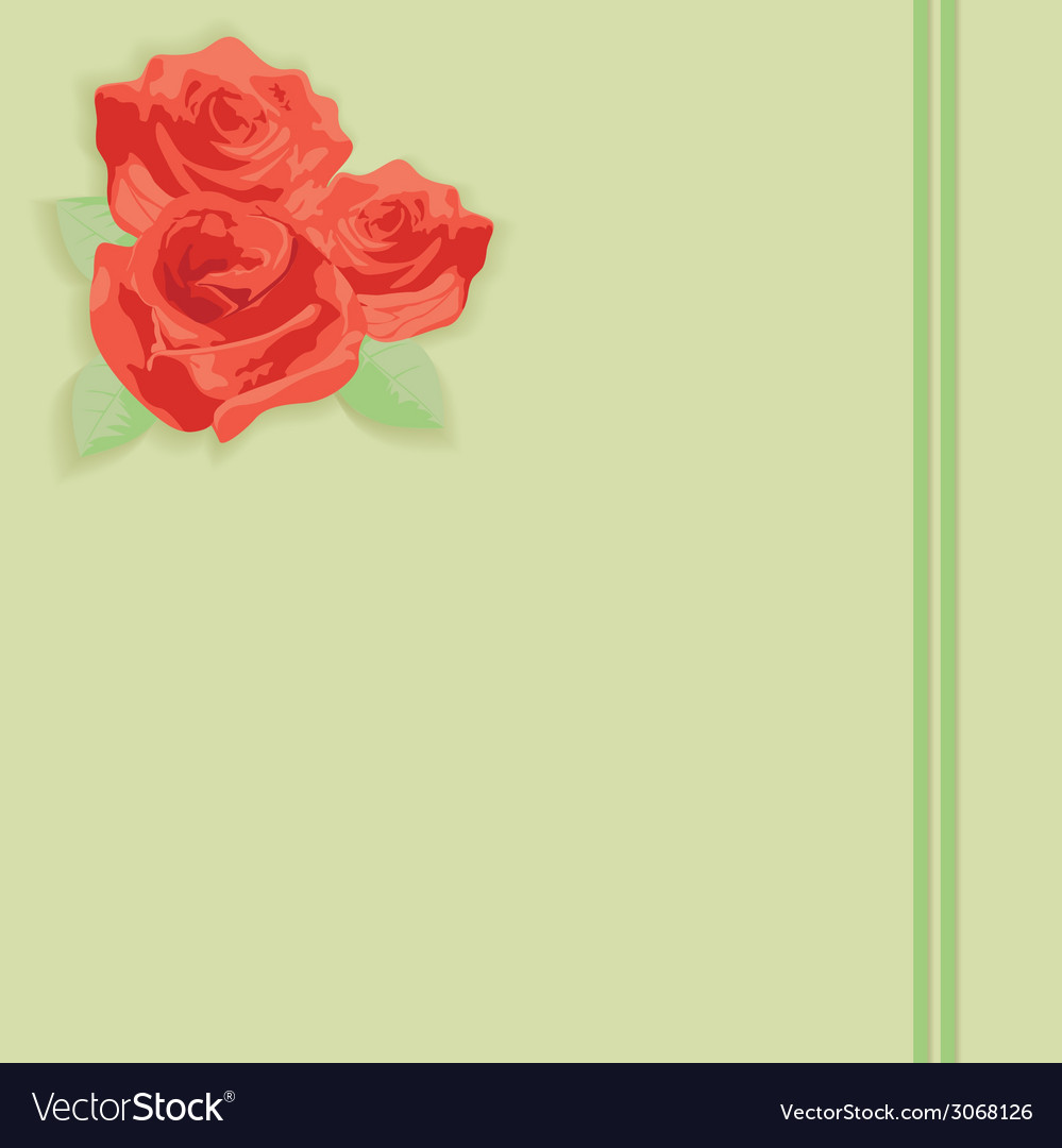 Flowers a rose on paper vector | Price: 1 Credit (USD $1)
