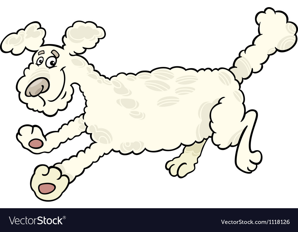 Running poodle dog cartoon vector | Price: 1 Credit (USD $1)