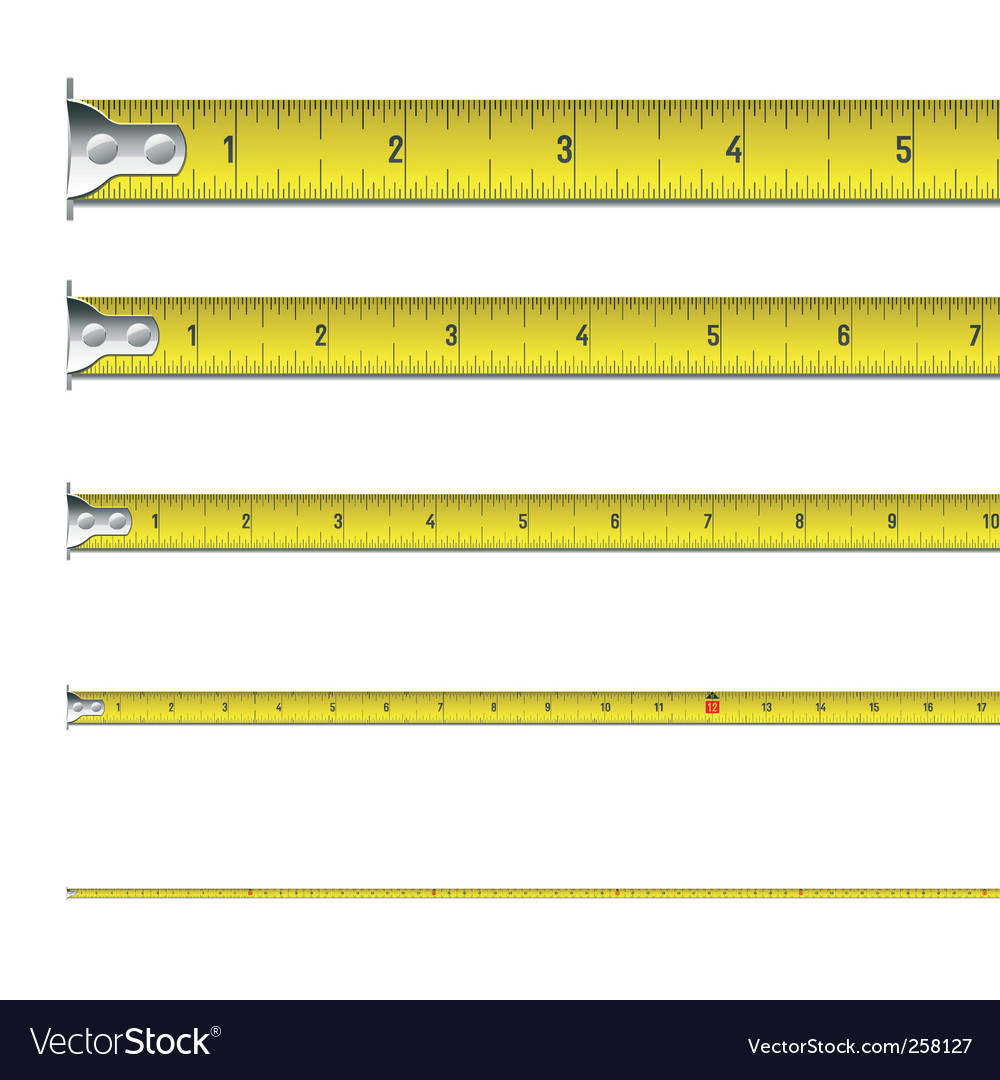 Tape measure in inches vector | Price: 1 Credit (USD $1)
