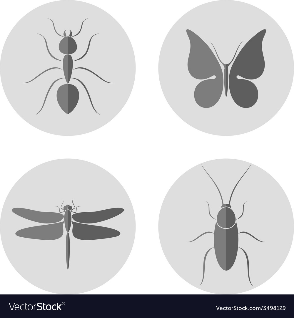 Insect icon set vector | Price: 1 Credit (USD $1)