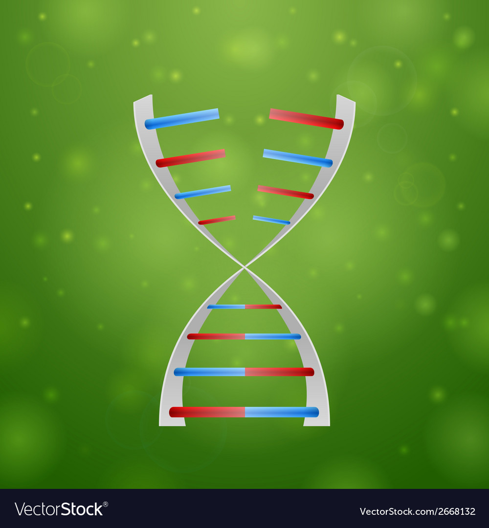 Dna and rna vector | Price: 1 Credit (USD $1)