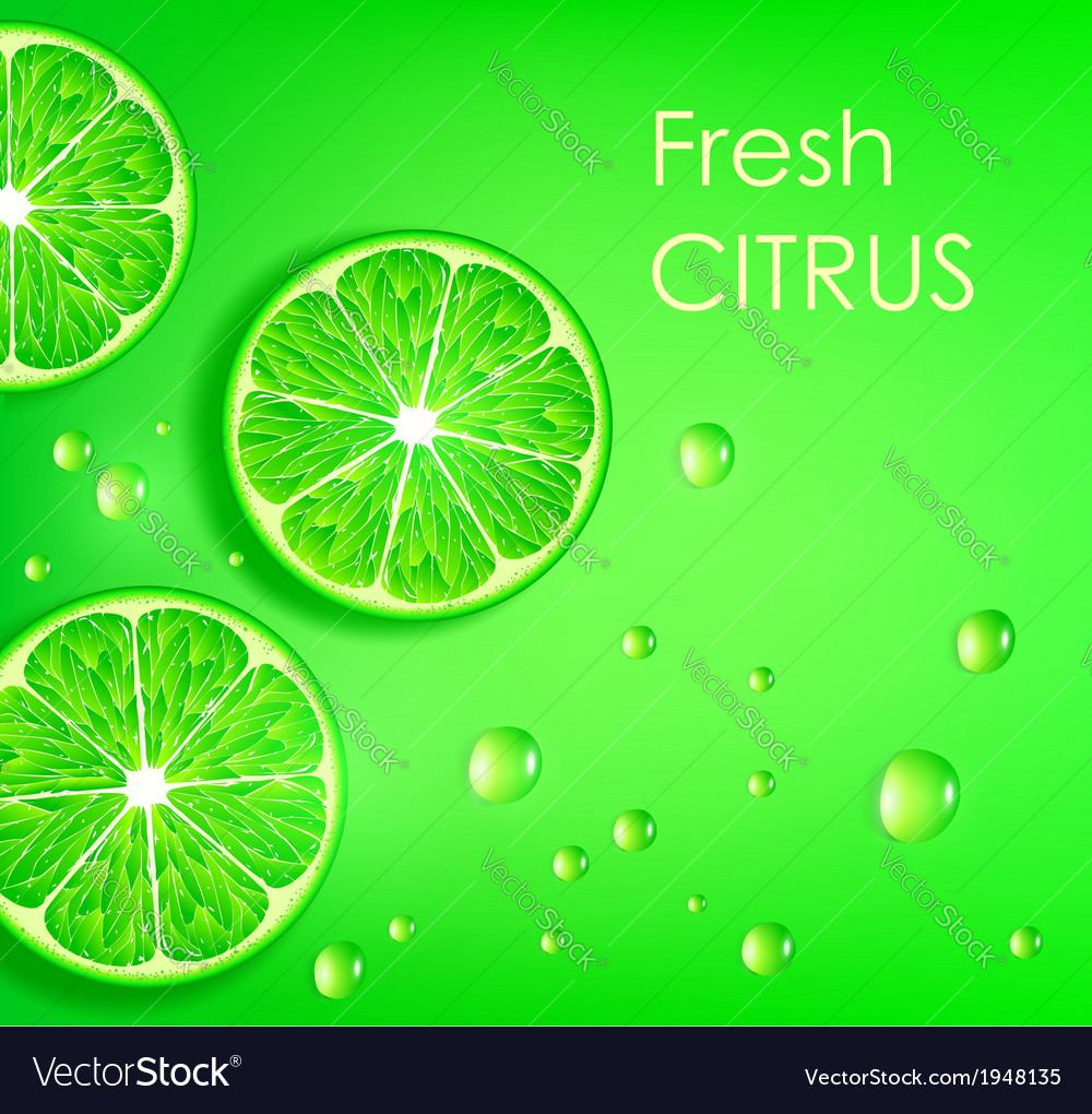 Lime on a green background vector | Price: 1 Credit (USD $1)