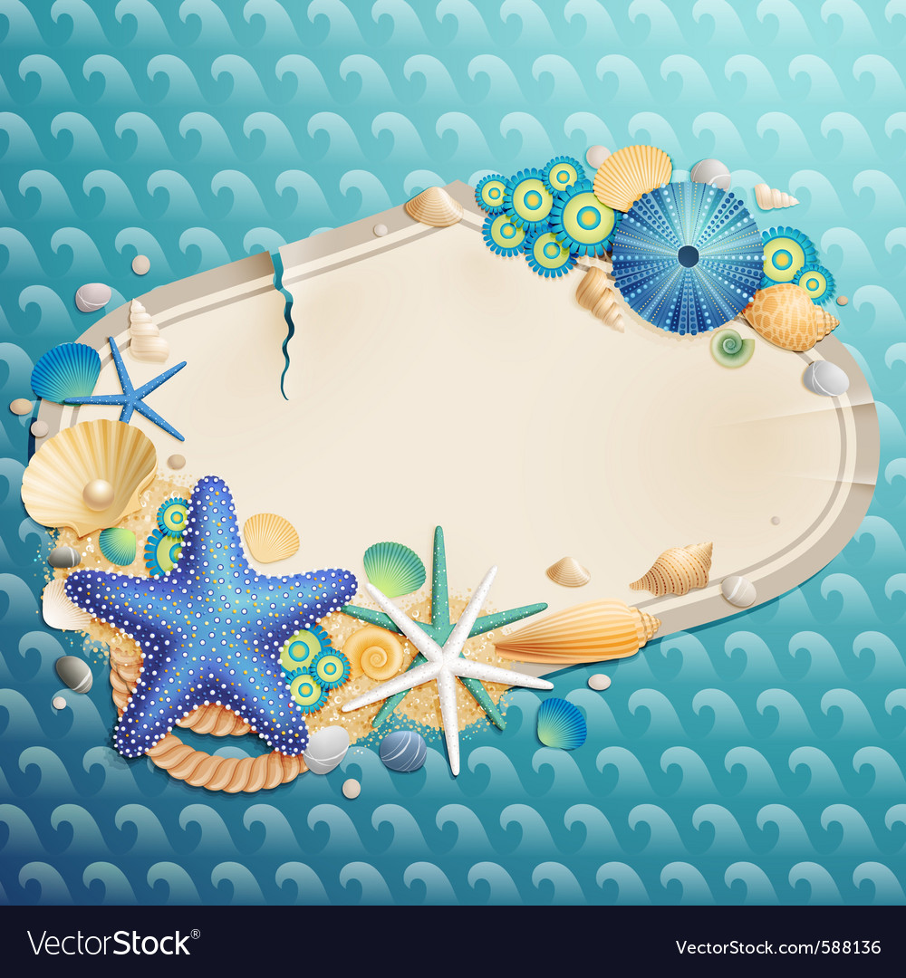 Shells and starfishes vector | Price: 5 Credit (USD $5)