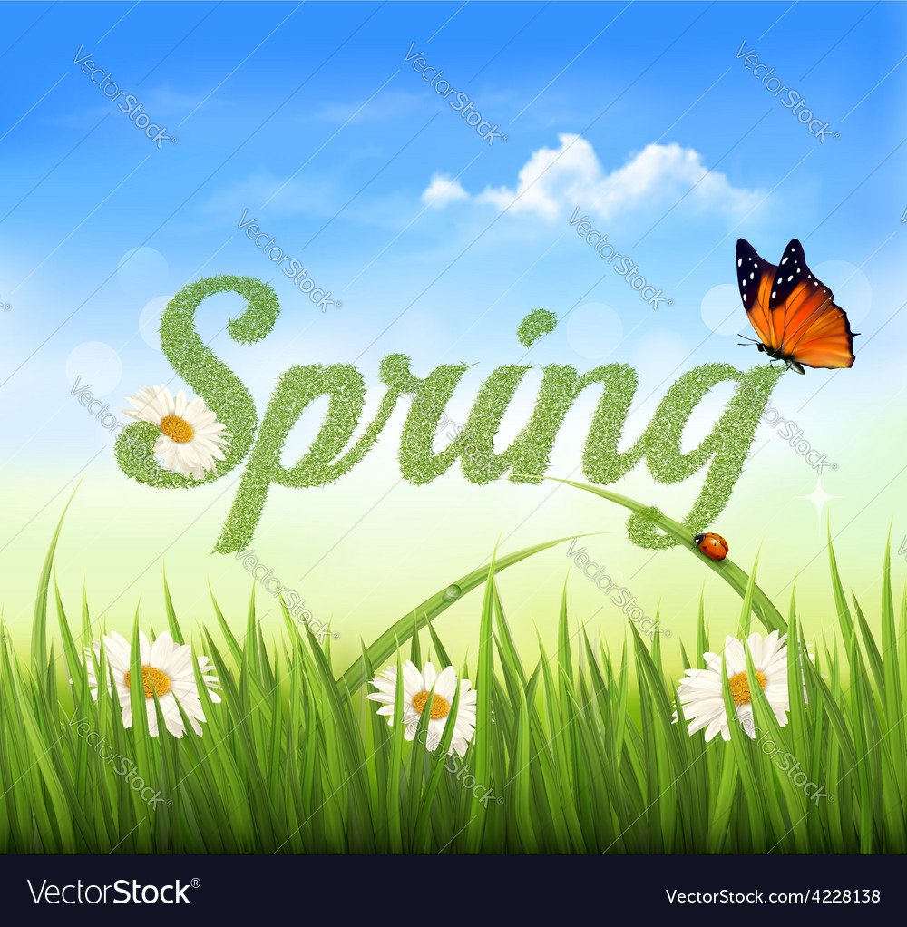 Spring background with grass sky and a butterfly vector | Price: 3 Credit (USD $3)