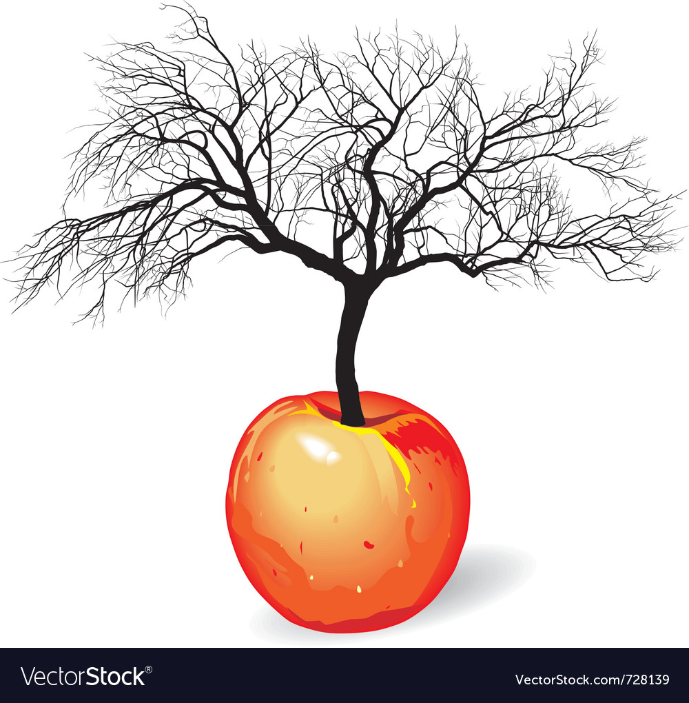 Apple tree from fruit vector | Price: 1 Credit (USD $1)