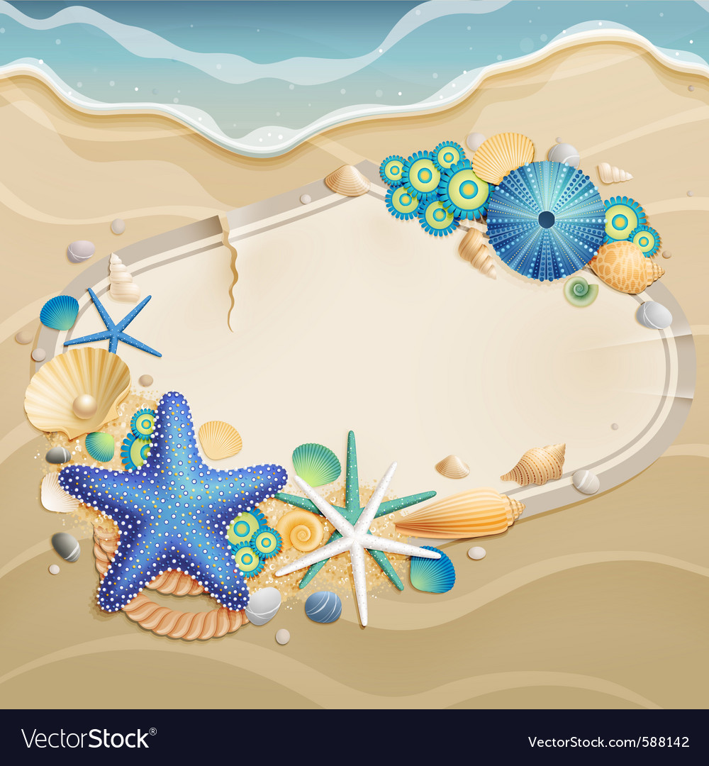 Shells and starfishes vector | Price: 3 Credit (USD $3)