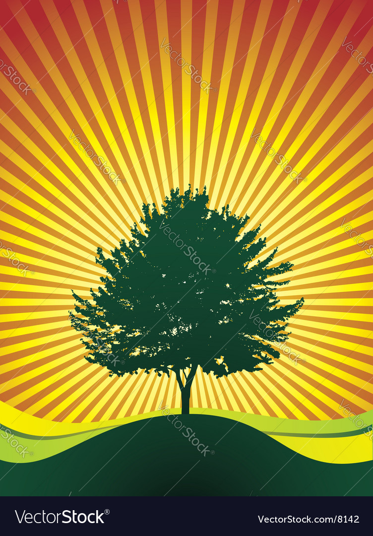 Tree on shine background vector | Price: 1 Credit (USD $1)