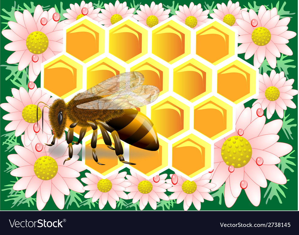 Beeswax with bee vector | Price: 1 Credit (USD $1)