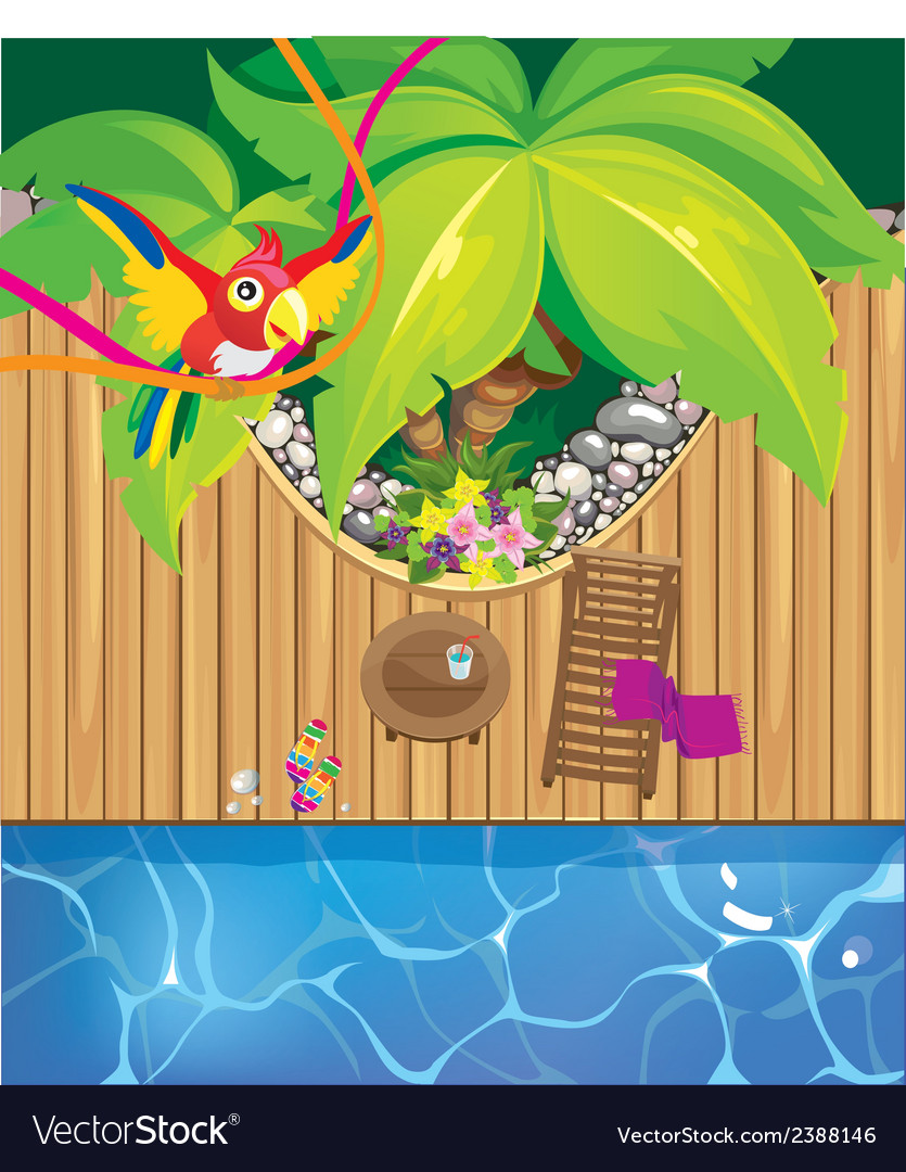 Pool and parrot vector | Price: 3 Credit (USD $3)