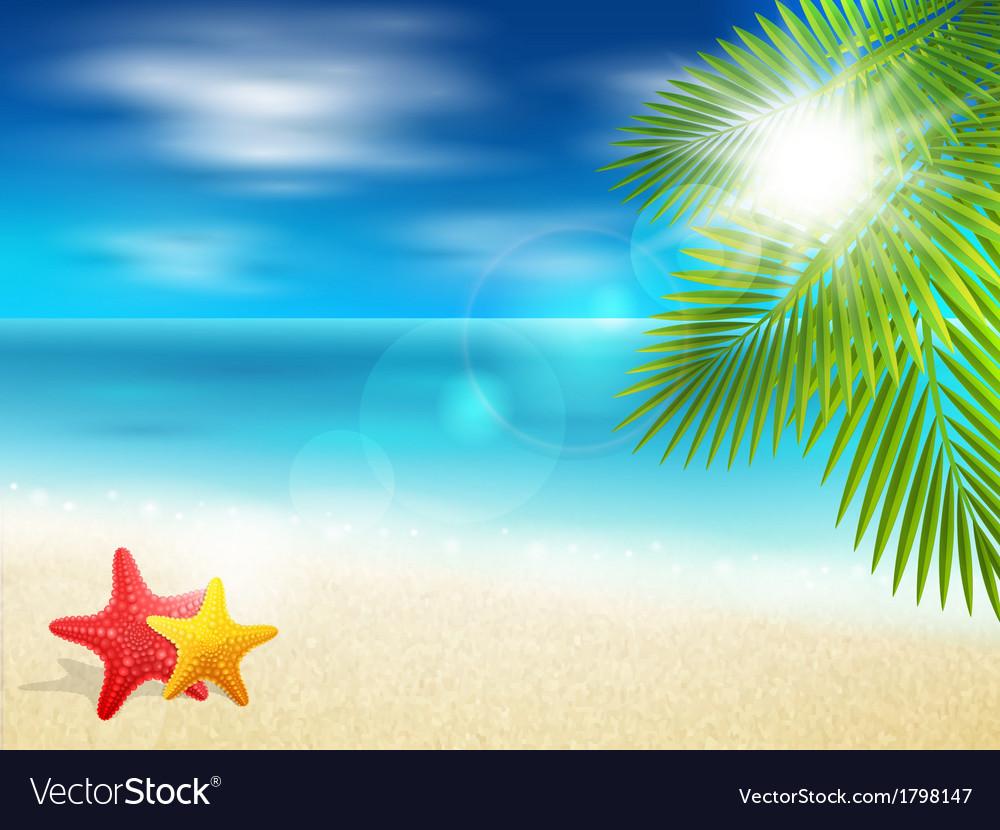 Ocean coast vector | Price: 1 Credit (USD $1)