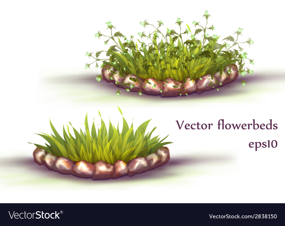 Flowerbed with grass and flowers vector | Price: 1 Credit (USD $1)