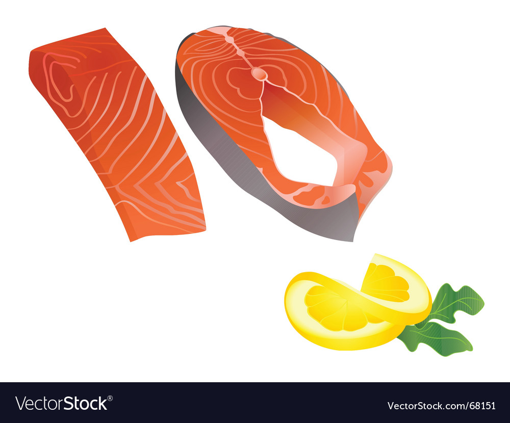 Raw salmon slices vector | Price: 1 Credit (USD $1)
