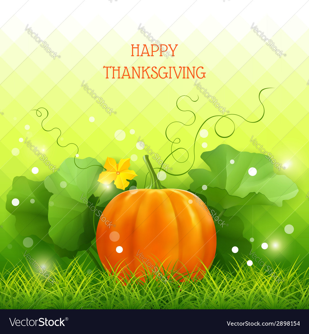 Pumpkin thanksgiving card vector | Price: 1 Credit (USD $1)