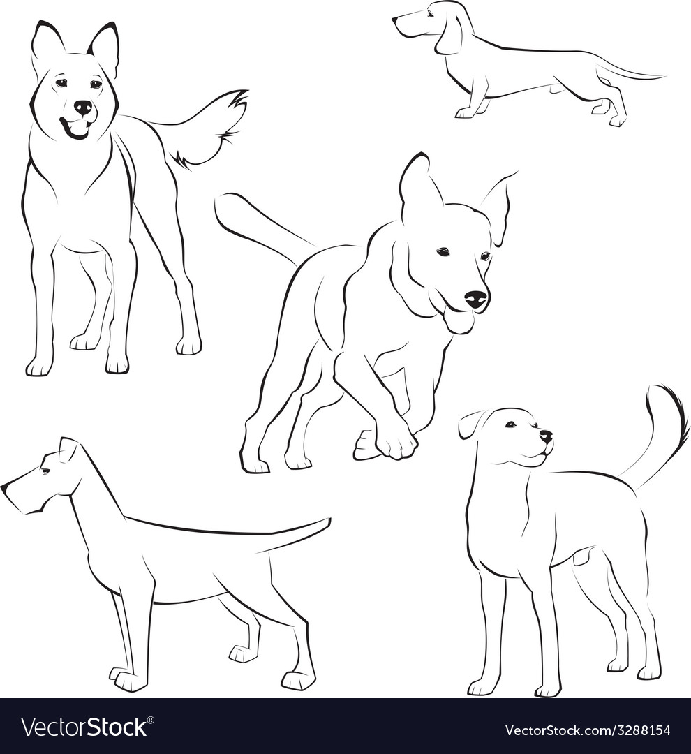 Set of dogs on white background vector | Price: 1 Credit (USD $1)