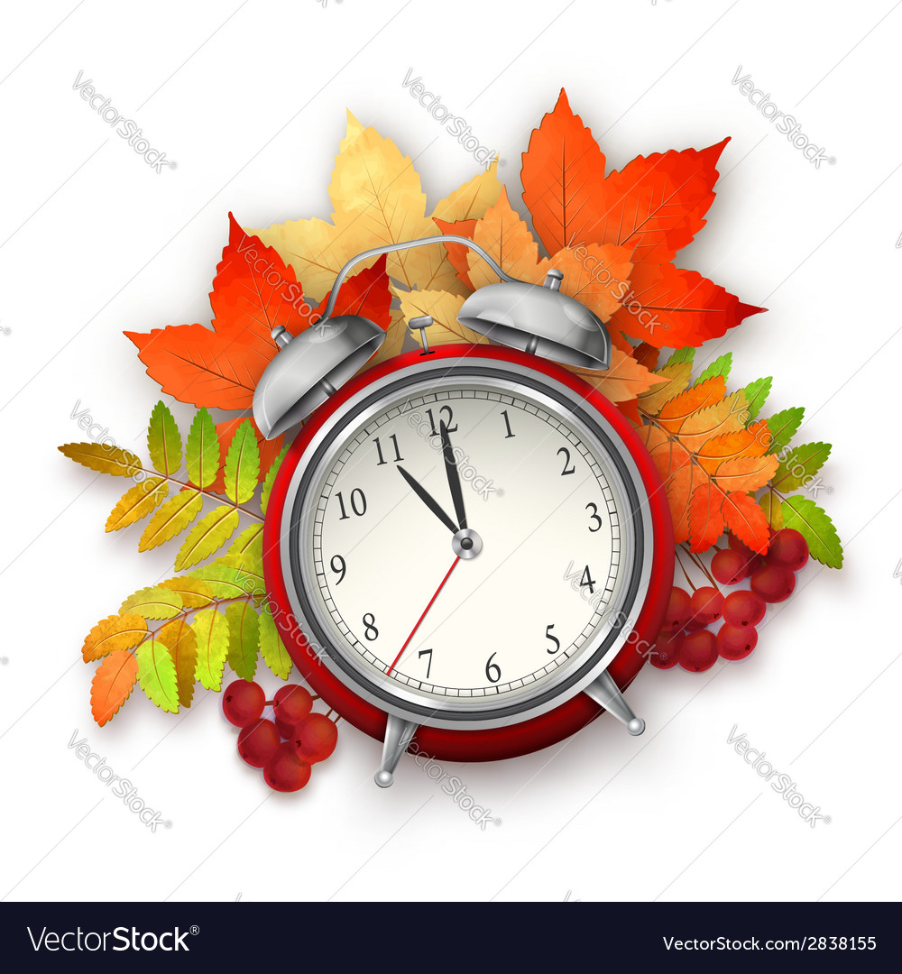Autumn fall leaves and alarm clock vector | Price: 1 Credit (USD $1)