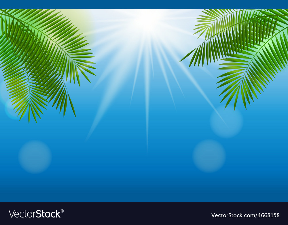Summer sunny natural background vector | Price: 1 Credit (USD $1)