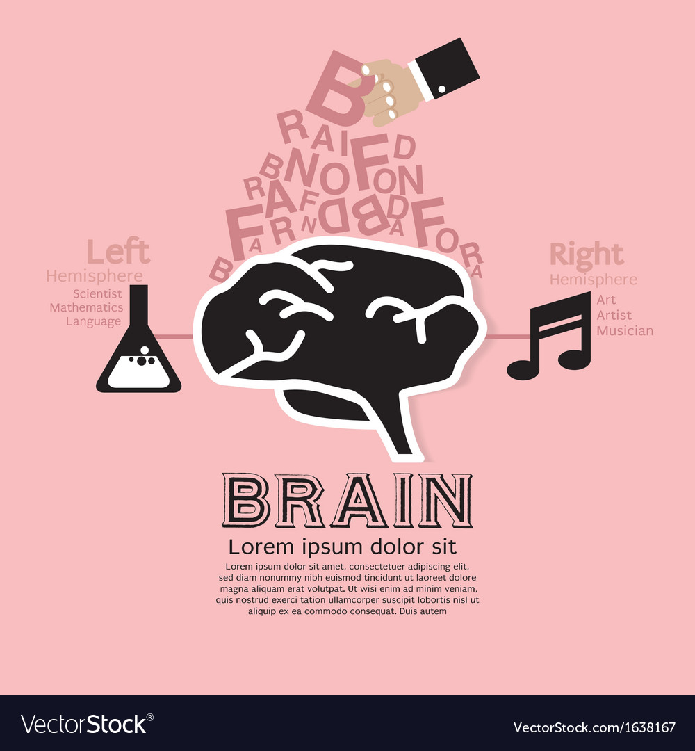 Brain infographic vector | Price: 1 Credit (USD $1)