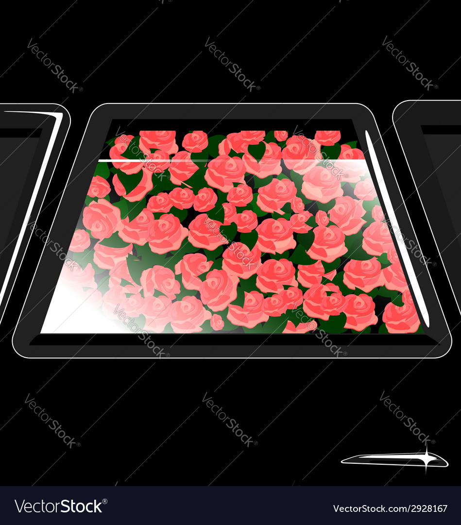 Window and flowers vector | Price: 1 Credit (USD $1)
