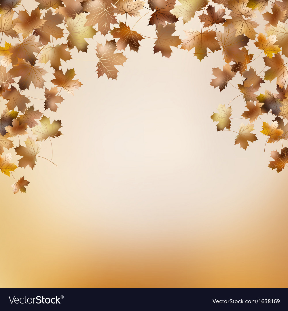 Abstract autumnal backgrounds template eps 10 vector | Price: 1 Credit (USD $1)