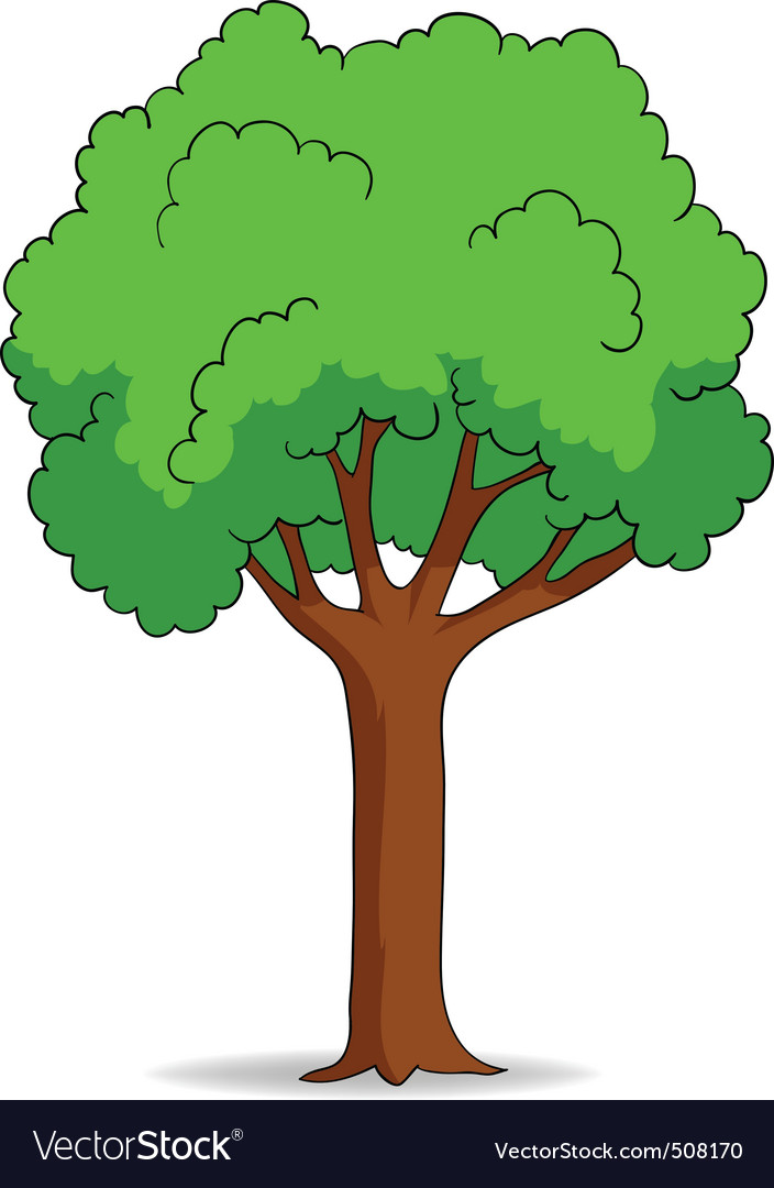 Cartoon tree isolated on white background vector | Price: 1 Credit (USD $1)