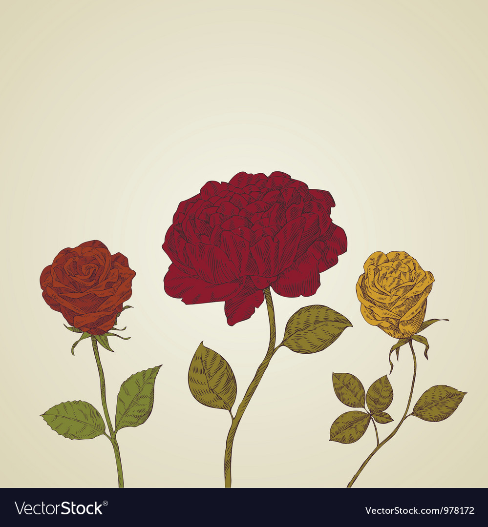 Abstract background beautiful retro roses vector | Price: 1 Credit (USD $1)
