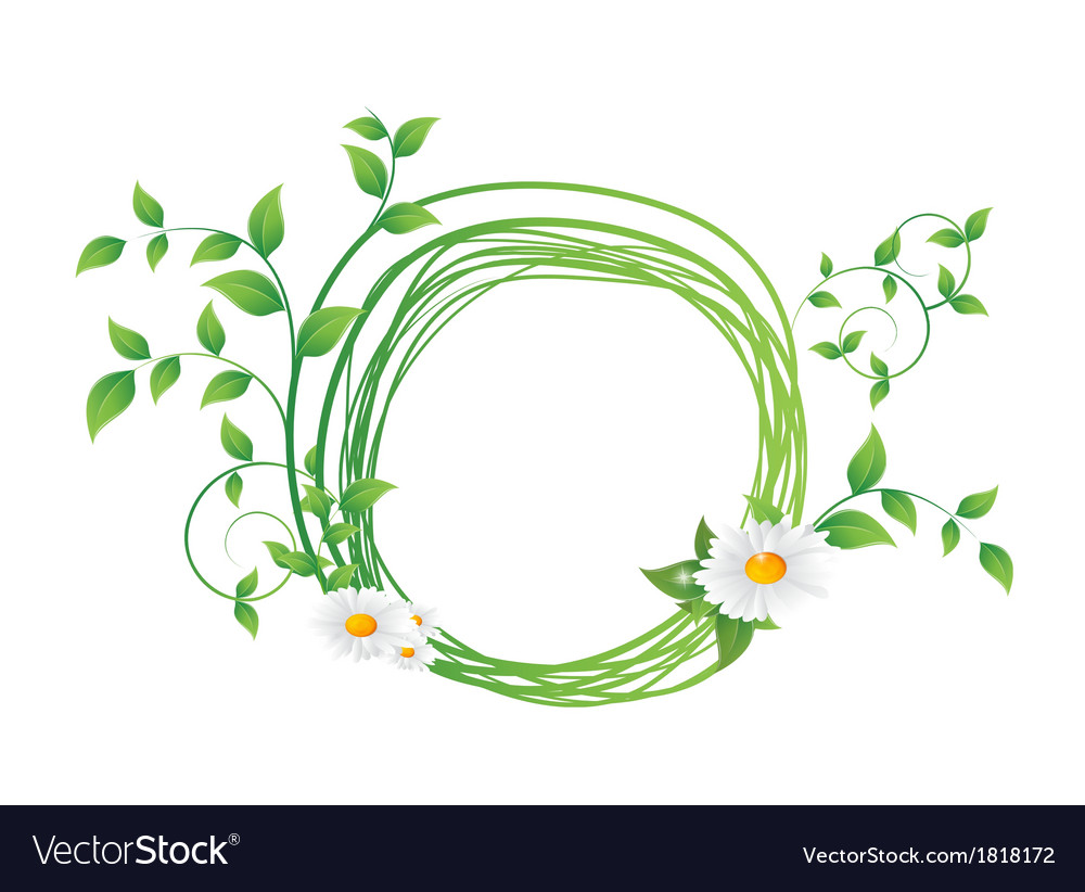 Chamomile flower and green leaves vector   Price: 1 Credit (USD $1)