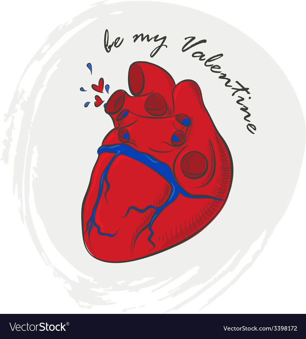 Valentines day greeting with human heart vector | Price: 1 Credit (USD $1)