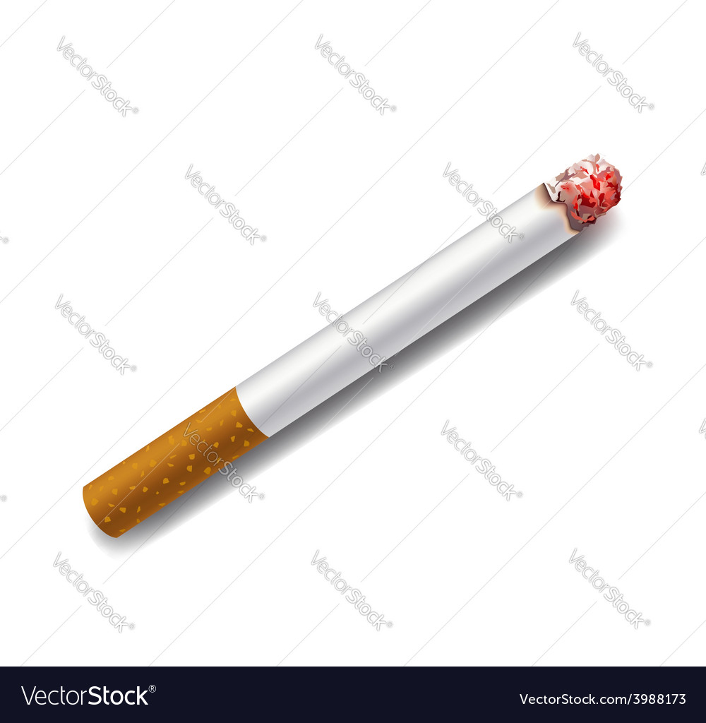 Smoldering cigarette on a white background vector | Price: 1 Credit (USD $1)