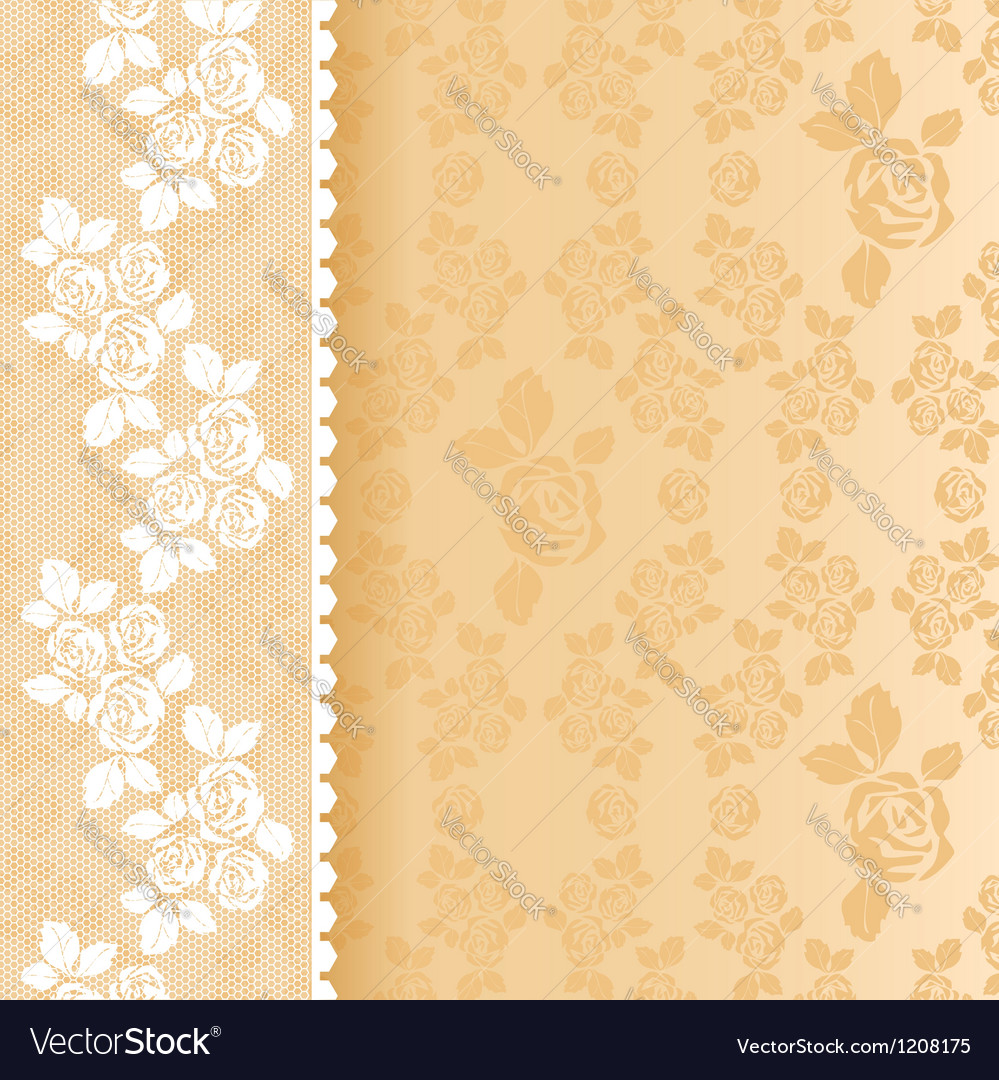 Lace beige square vector | Price: 1 Credit (USD $1)