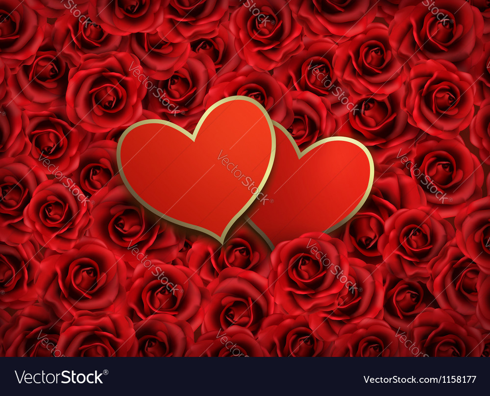 Valentines day background two hearts on background vector | Price: 1 Credit (USD $1)