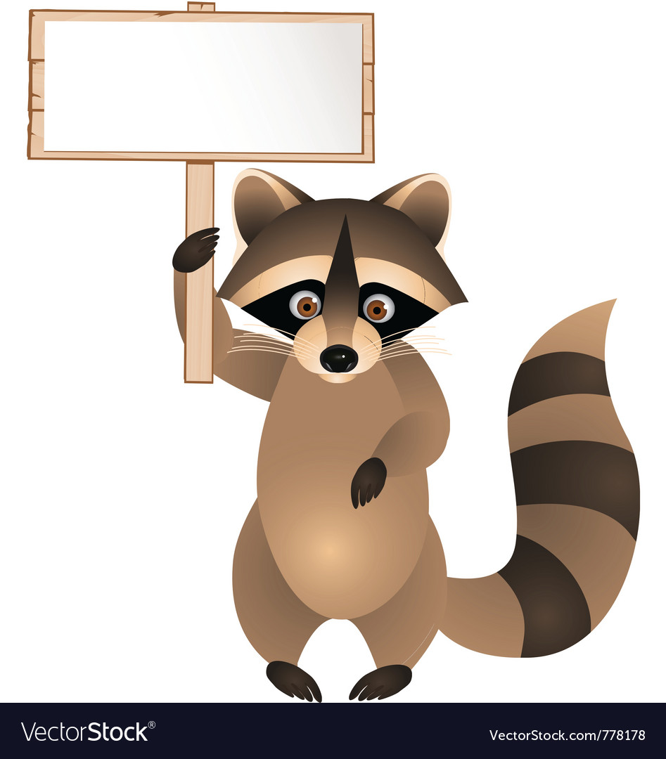 Raccoon cartoon with blank sign vector | Price: 1 Credit (USD $1)