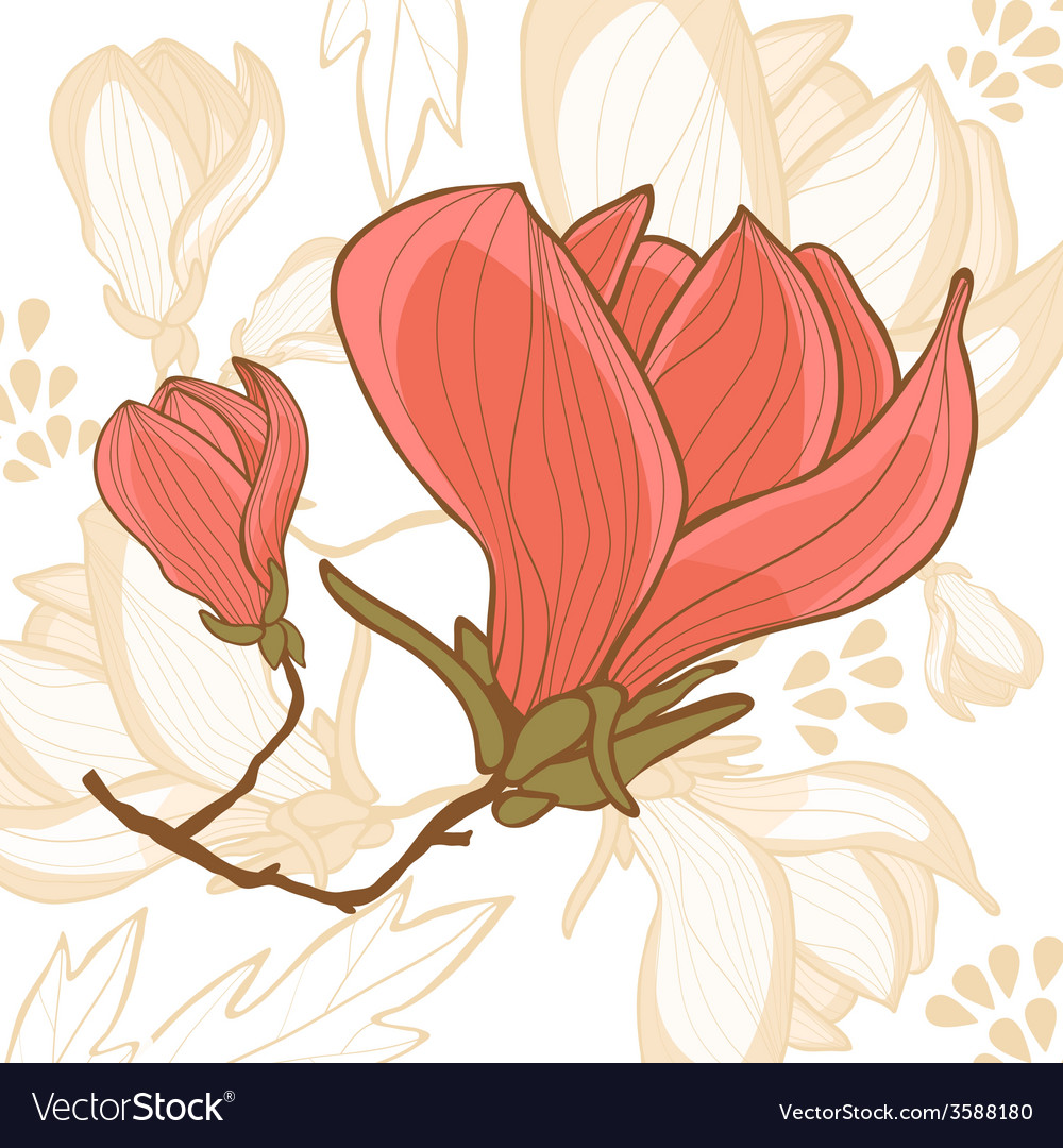 Beautiful magnolia flower vector | Price: 1 Credit (USD $1)