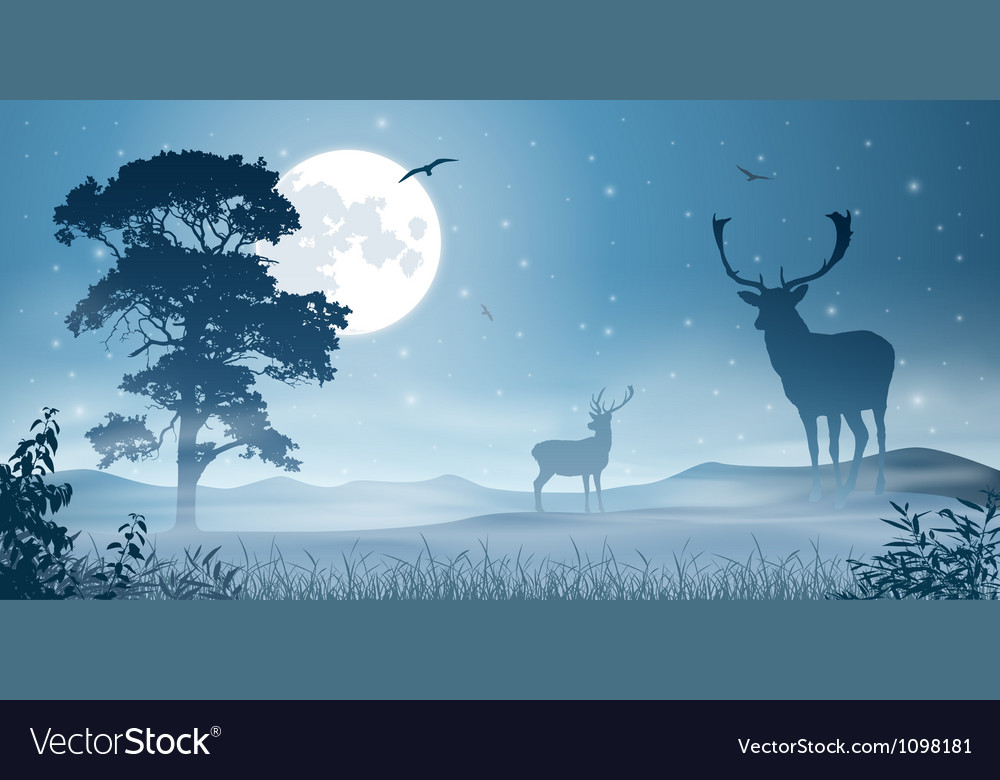 Male stag deer vector | Price: 1 Credit (USD $1)