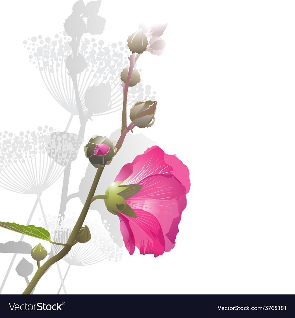 Malva flower arrangement vector | Price: 1 Credit (USD $1)