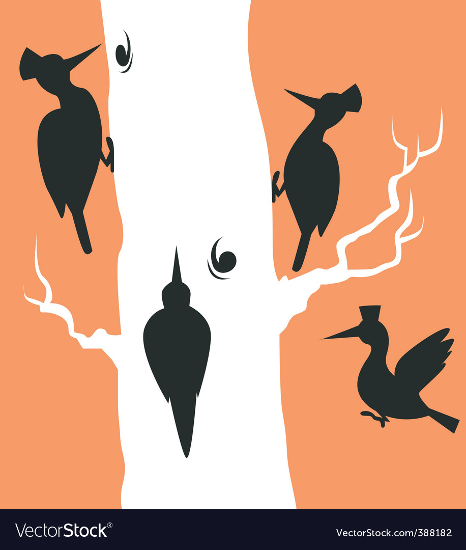 Woodpecker vector | Price: 1 Credit (USD $1)