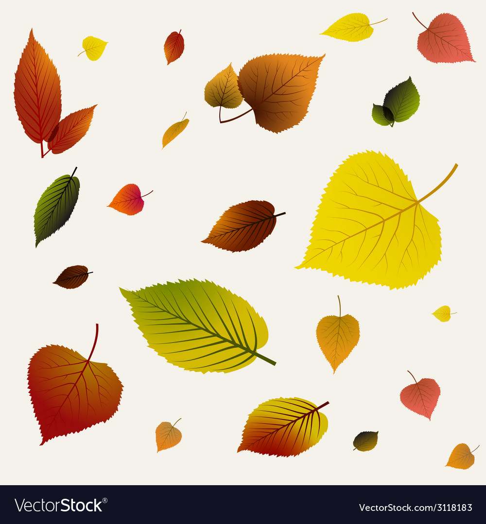 Autumn abstract floral background pattern vector | Price: 1 Credit (USD $1)